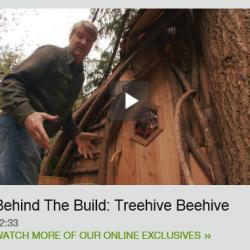 Treehive Beehive